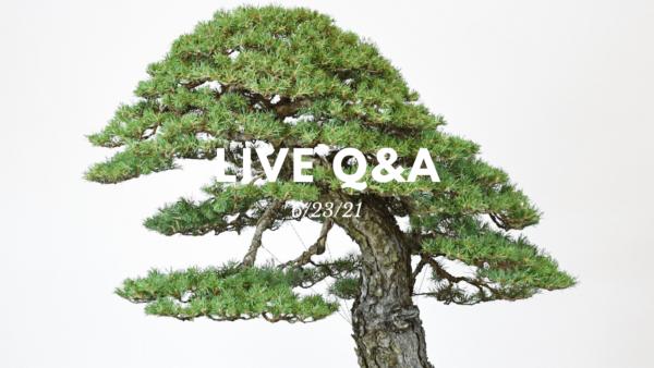 Bonsai-U Live Q&A session held on 6/23/21